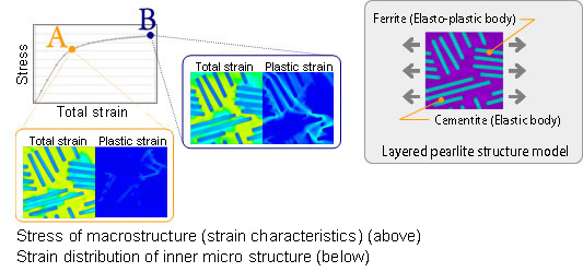 Micro-stress distribution of the internal metal structure